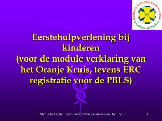 Eerstehulpverlening bij kinderen voor de module verklaring van het Oranje Kruis, tevens ERC registratie voor de PBLS
