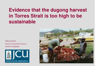 Evidence that the dugong harvest in Torres Strait is too high to be sustainable