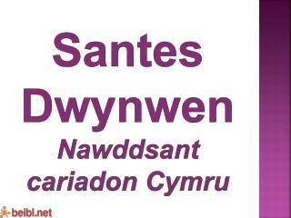 Santes Dwynwen Nawddsant cariadon Cymru