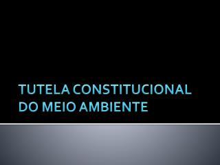 TUTELA CONSTITUCIONAL DO MEIO AMBIENTE