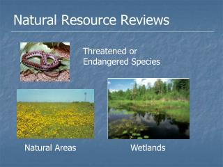 Natural Resource Reviews