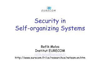 Security in  Self-organizing Systems