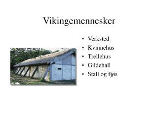 Vikingemennesker