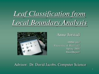 Leaf Classification from  Local Boundary Analysis