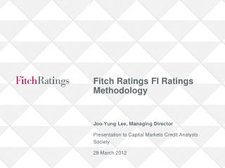 Fitch Ratings FI Ratings Methodology
