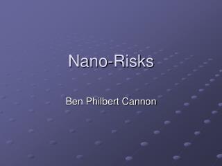 Nano-Risks