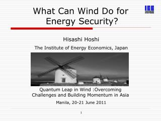 What Can Wind Do for  Energy Security?