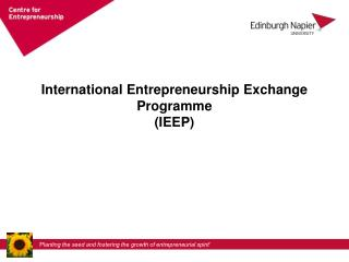 International Entrepreneurship Exchange Programme (IEEP)