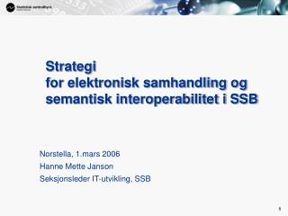 Strategi  for elektronisk samhandling og semantisk interoperabilitet i SSB