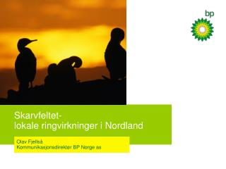 Skarvfeltet-  lokale ringvirkninger i Nordland