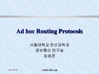 Ad hoc Routing Protocols