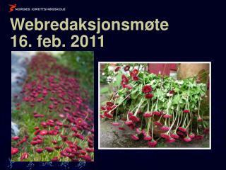 Webredaksjonsmøte  16. feb. 2011