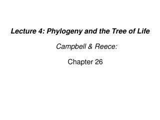 Lecture 4: Phylogeny and the Tree of Life   Campbell  Reece:   Chapter 26