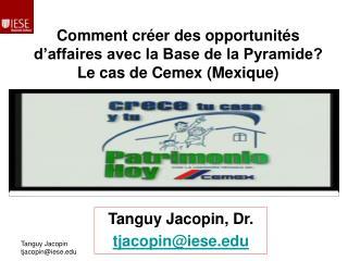 Comment créer des opportunités d'affaires avec la Base de la Pyramide? Le cas de Cemex (Mexique)