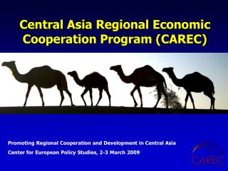 Central Asia Regional Economic Cooperation Program (CAREC)