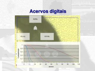 Acervos digitais