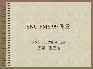 SNU FMS 99  개요
