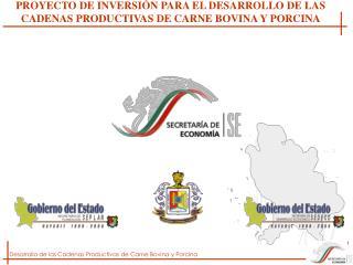 PROYECTO DE INVERSI N PARA EL DESARROLLO DE LAS CADENAS PRODUCTIVAS DE CARNE BOVINA Y PORCINA