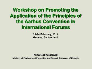 23-24 February, 2011 Geneva, Switzerland Nino Gokhelashvili