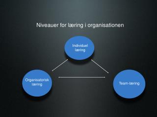 Niveauer for læring i organisationen