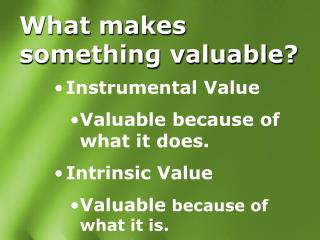What makes something valuable?