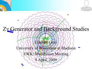 Zγ Generator and Background Studies
