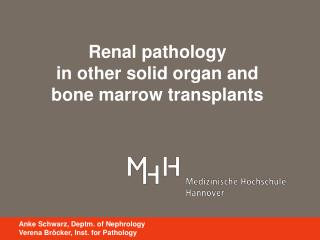 Renal pathology  in other solid organ and  bone marrow transplants