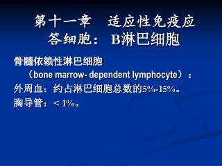 骨髓依赖性淋巴细胞       ( bone marrow- dependent lymphocyte ): 外周血:约占淋巴细胞总数的5%-15%。 胸导管:< 1%。