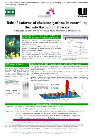 Role of isoforms of chalcone synthase in controlling flux into flavonoid pathways