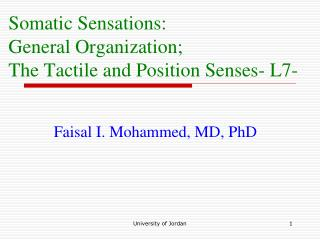 Somatic Sensations:  General Organization; The Tactile and Position Senses- L7-