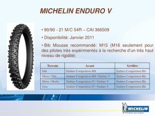 MICHELIN ENDURO V