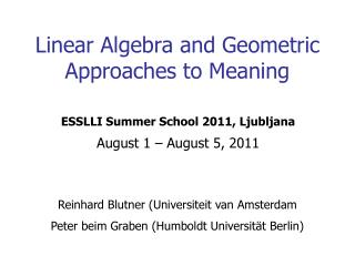 Linear Algebra and Geometric Approaches to Meaning