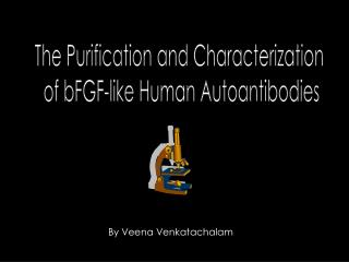 The Purification and Characterization  of bFGF-like Human Autoantibodies
