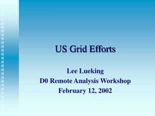 US Grid Efforts