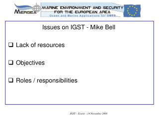 Issues on IGST - Mike Bell   Lack of resources    Objectives    Roles / responsibilities