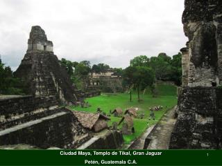 Ciudad Maya, Templo de Tikal, Gran Jaguar Petén, Guatemala C.A.