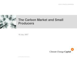 The Carbon Market and Small Producers