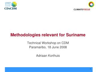 Methodologies relevant for Suriname