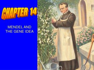 MENDEL AND  THE GENE IDEA