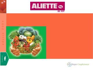 Zawiera 80% fosetylu glinowego (AL)  (związek z grupy fosfonowych)