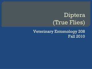 Veterinary Entomology 208 Fall 2010