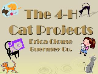 The 4-H Cat Projects Erica Clouse Guernsey Co.