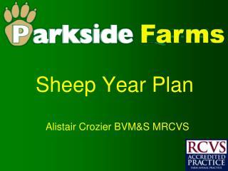 Sheep Year Plan