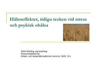 Hälsoeffekter, tidiga tecken vid stress och psykisk ohälsa