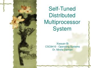 Self-Tuned Distributed Multiprocessor System