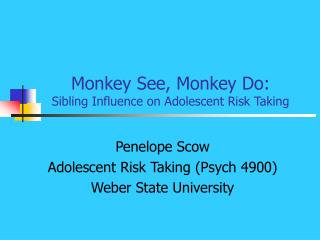 Monkey See, Monkey Do: Sibling Influence on Adolescent Risk Taking