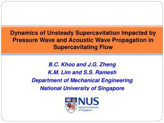 B.C. Khoo and J.G. Zheng K.M. Lim and S.S. Ramesh Department of Mechanical Engineering