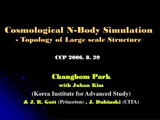 Cosmological N-Body Simulation - Topology of Large scale Structure