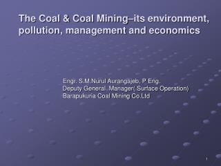 The Coal  Coal Mining its environment, pollution, management and economics