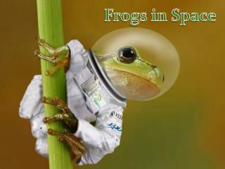Frogs in Space